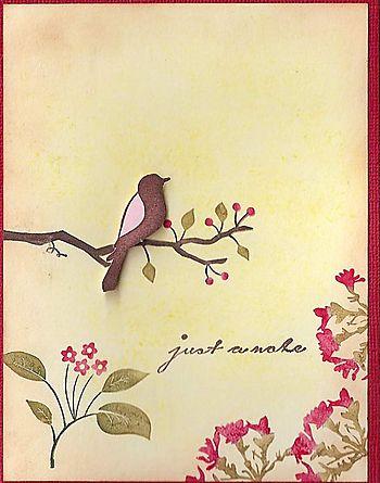 Bird-on-branch-lg
