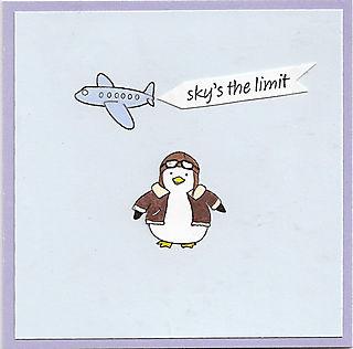 Aviator-penguin-card-lg