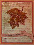 Maple-Leaf-acetate-lg