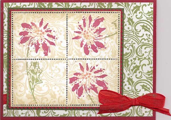 Poinsettia-1-lg