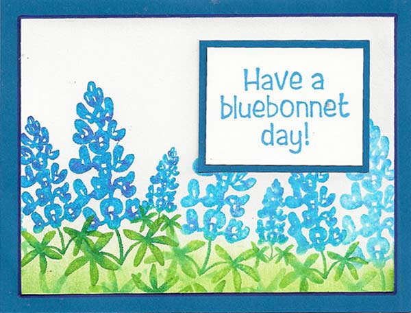 Bluebonnets-2-lg