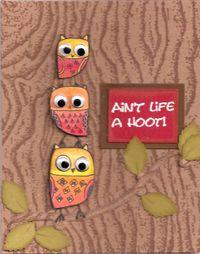 Felicity-Owls-lg
