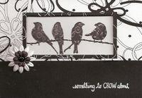 Birds-lg