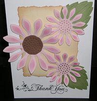 Pink-Sunflower-lg
