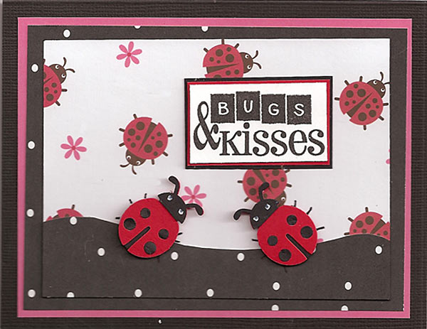 Ladybug-sample