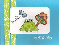Frog-lg