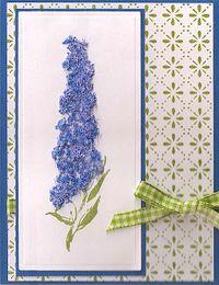 Blue-Delphinium