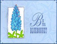 Bluebonnet-copic