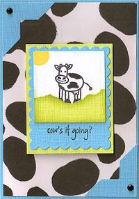 Cows-It-Going-2