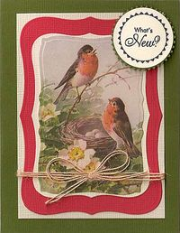 Whats-New-Robins