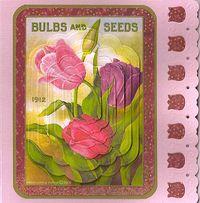 3D-Tulip