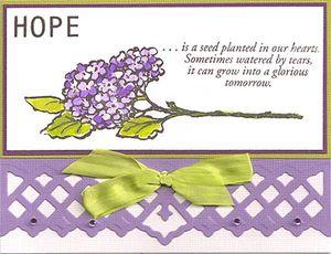 Hope-Hydrangea
