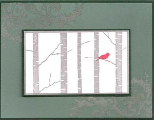 Birch-trees-red-bird