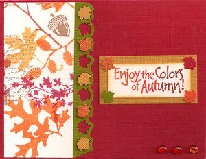 Enjoy-the-Colors