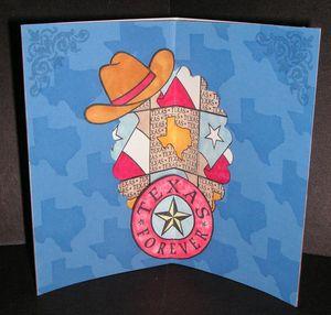 Finished-Texas-Flag