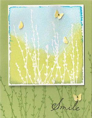 Butterfly-Field