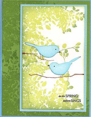 Mem-Box-Birds