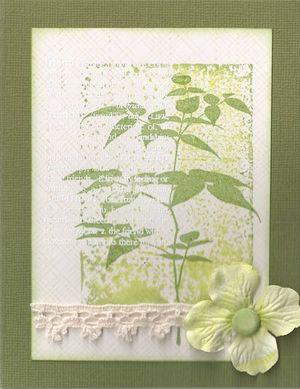Bamboo-Tree