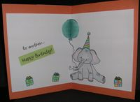 Elephant-wrinkled-inside