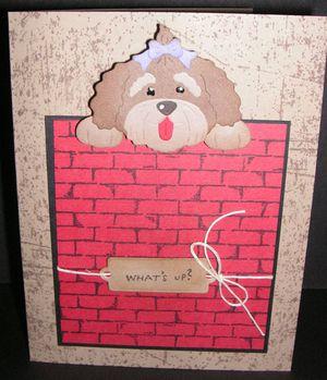 Puppy-Brick-Wall