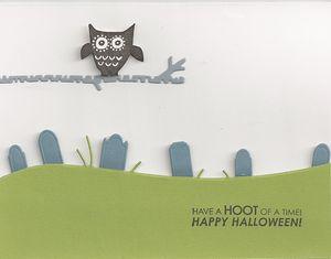 Owl-Birch-Tree-Graveyard-Bo