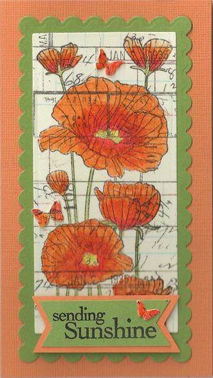 Poppies-Tissue-Tape