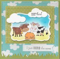 Herd-the-news