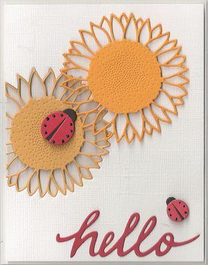 Wild-Sunflower-1