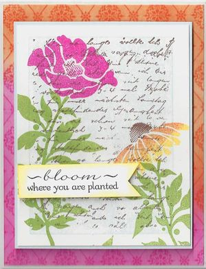 Bloom-where-planted