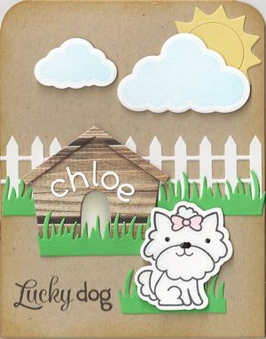 Lucky-Dog-Outside