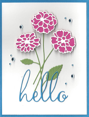 Zinnia-Hello