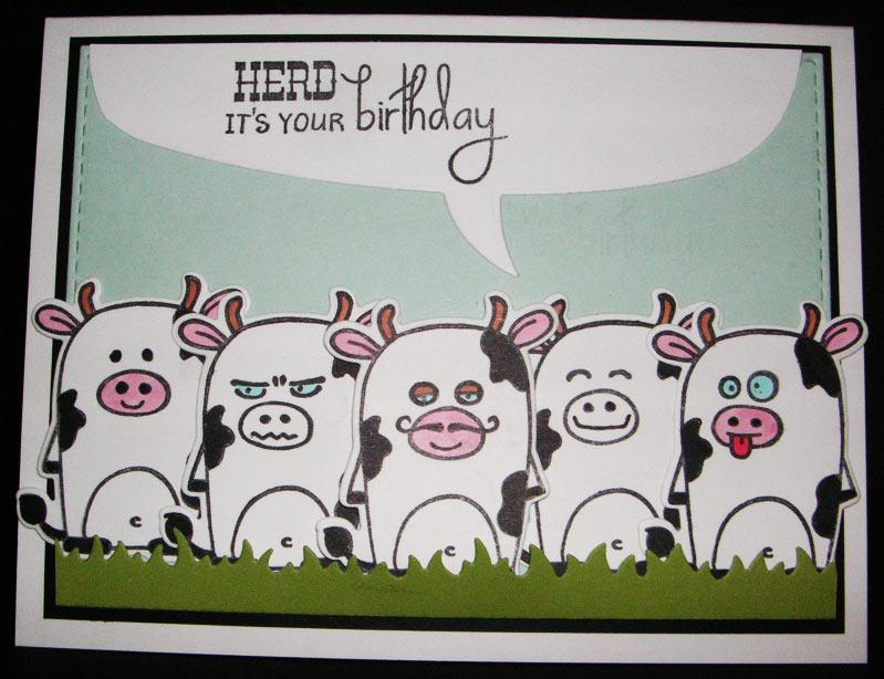 Herd-Birthday-Bubble