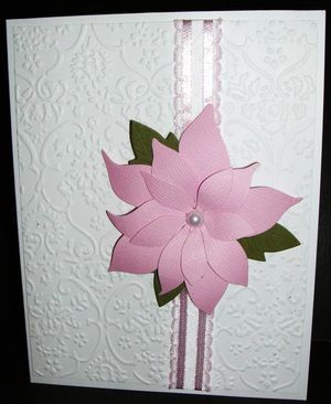 Poinsettia-lg-Jane
