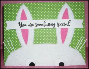 Somebunny-Special