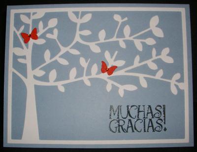 Shade-Tree-Muchas-Gracias
