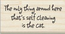Selfcleaningcat